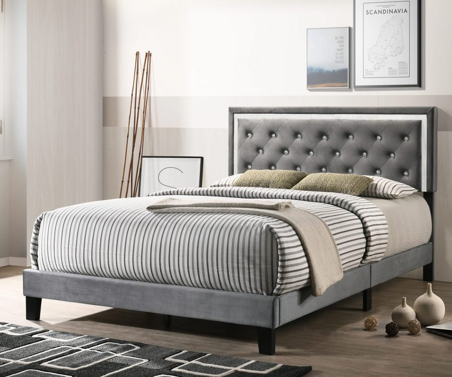 |Dark Grey Velvet Uph. Panel Bed with Accents - Twin|